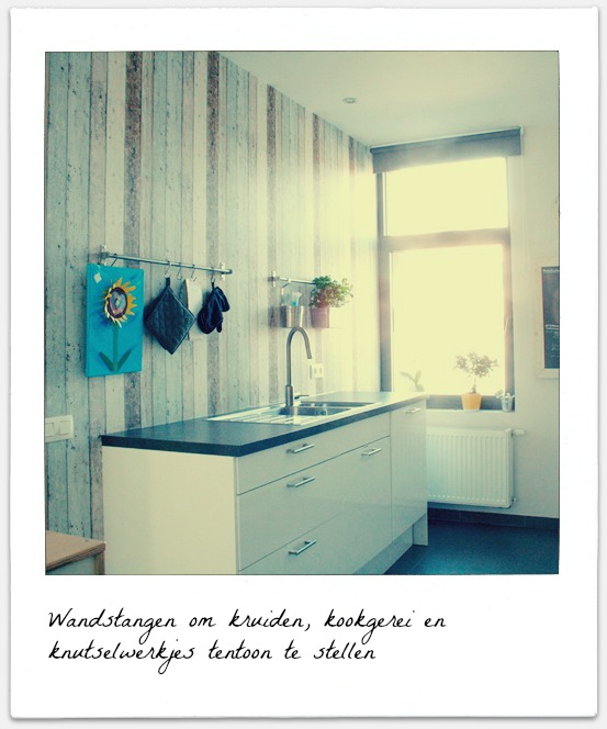 white highgloss kitchen-reclaimed wood-herbs-art