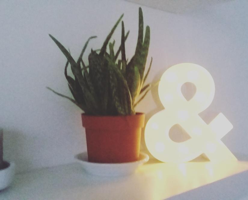 huisjethuisje-light-hema
